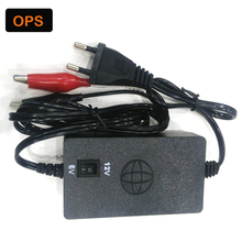 Hot Smart 6V/12V 1A/2A Switchable Car Battery Charger Negative Pulse Intelligent Battery