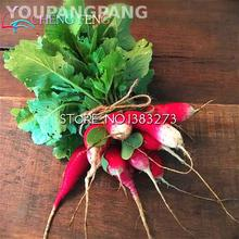 200pcs/bag Radish Seeds Looks Like Sausage Duett Early Spring Radish Plants Big Productive And Tasty Vegetable For Garden Seed