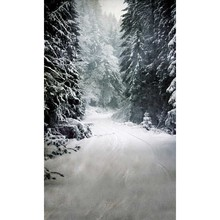 Custom vinyl print cloth winter snow forest photography backdrops for stage model photo studio portrait backgrounds props ST-359