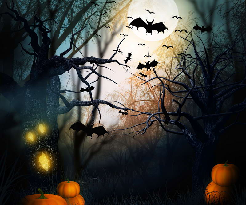 8X8ft vinyl photography background  Computer Latest Halloween night  Photography backdrops for Photo studio HA-087<br>