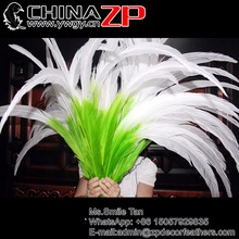 CHINAZP Super Long Pheasant Feather Wholesale 65~70cm(26 to 28inch) 50 pcs/lot Half Green with White Silver Pheasant Feathers(China)