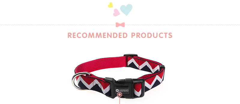 Outdoor Nylon Dog Collars Mascotas Pet Dogs Neck Straps Puppy Led Dog Collar Strong Colorful Wave 40-62CM Adjustable HD002004 (14)