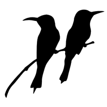 16*14cm Cute Hummingbird Watching Auto Vinyl Decal Sticker Cool Graphic Car Truck Window Laptop Cars(China)