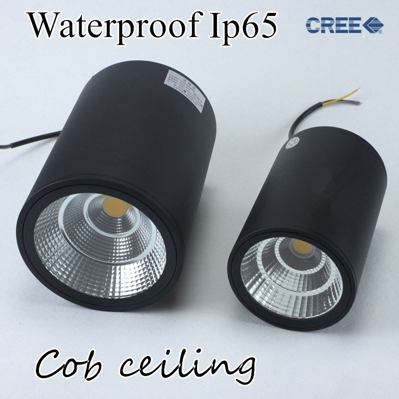 LED waterproof Ip65 COB Ceiling outdoor Surface Mounted 12W 20W 30W AC85-265V warm white LED downlight Hotel villa home lighting(China)