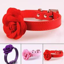 New sweet rose flower Buckle pet dog collar 3 candy color puppy dog necklace collar(China)
