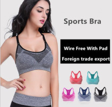 Hot Sell  Professional Womens Seamless Sports Bra With Removable Cups Comfortable  Navy Blue Red Grey Plus Size Free Shipping