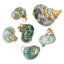DoreenBeads Shell Charm Pendants Conch At Random 2.8cm-4.6cm x 2.2cm-3.4cm, 1 Pc 2015 new