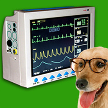 CMS8000 Veterinary 6-Parameter TEMP, Pulse Rate, Respiration, ECG, SPO2, NIBP Digital Medical ICU Patient Vital Signs Monitor