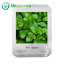 200PCS Mint Mentha Seeds Green Vegetable Seeds Fresh Culinary Medicinal DIY Home Garden Plant(China)