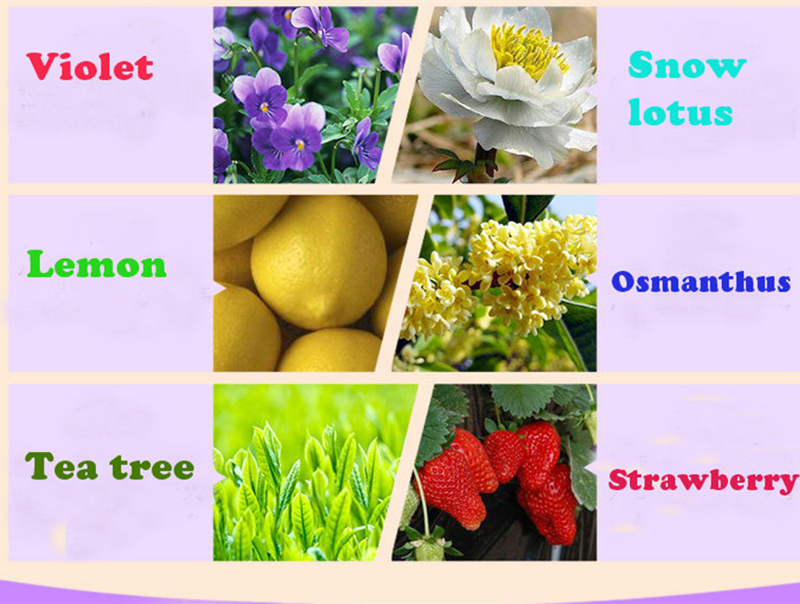Dimollaure 12 Kinds of Fragrance Essential Oil Pack for DIY Aromatherapy Humidifier Fragrance lamp Purifying air Jasmine Oil 11