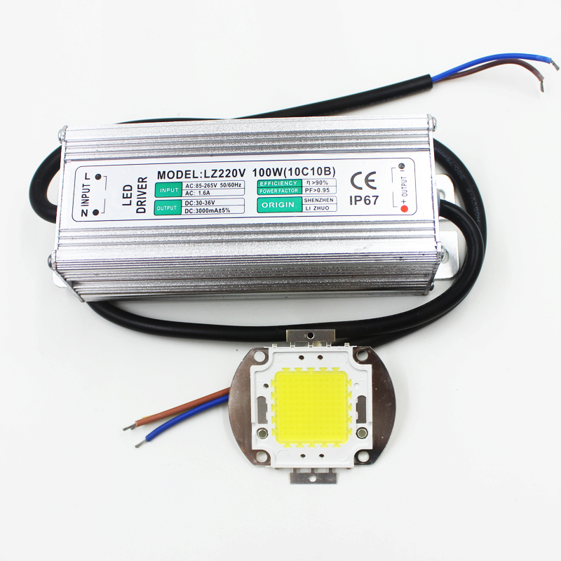 Real Full Watt 100w High Power COB LED lamp Chips Bulb with LED Driver For DIY Floodlight Spot light Lawn<br>