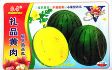Yellow flesh extremely early-maturing watermelon seeds Circular juicy fewer seeds Sweet crispy not dehiscent fruit 5 grams