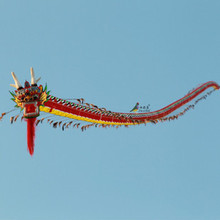 stunt kite flying toys rainbow bamboo crafts snake outdoor fun sports soft kites handles chinese Traditional kite dragon adults(China)