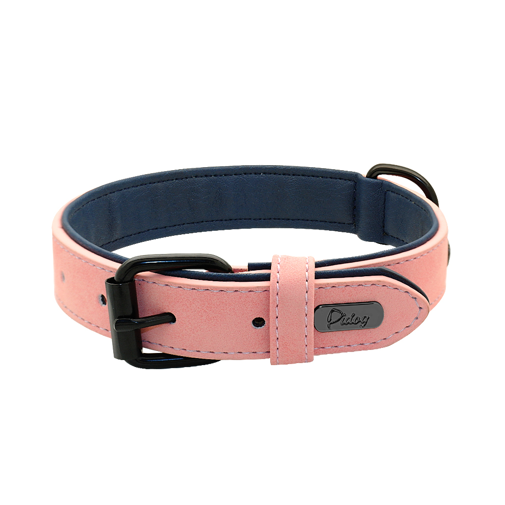 Dog Collar with Name Product Image 12