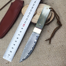 high quality Damascus hunting knife 60HRC fixed blade knife Full Tang black wood handle outdoor survival Hiking knife with