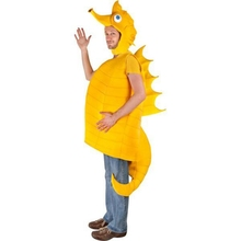 Mens Adult Whimsical Seahorse Unique Undersea Animal Hippocampus Halloween Costume Perfect To Rock The Party(China)