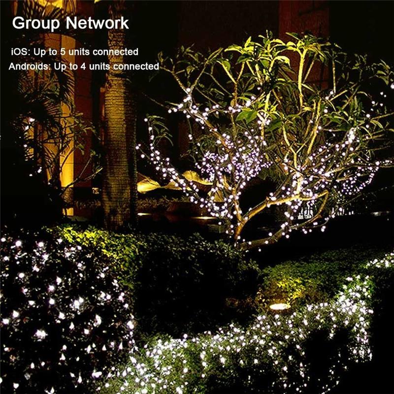 Dimmable LED Christmas Lights (11)