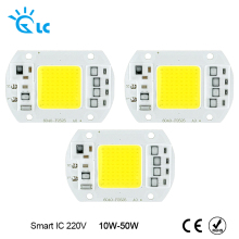LED Chip 220V COB Chip led 50W 30W 20W 10W 240V Input Smart IC Driver Fit For DIY LED Floodlight Spotlight Cold White Warm White