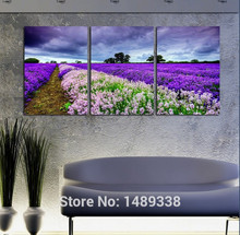 New 3 Panel Modern Painting Home Decorative Art Picture Paint on Canvas Prints picture beautful Lavender with framed 3pcs/set