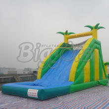 FREE SHIPPING BY SEA Popular Inflatable Water Slide Inflatable Toy For Kids(China)