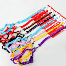 Puppy Pet Dog Cat Nylon Collar Peppy Dog Harness Collar Printed Pet Safety Led Leash Rope Belt Wholesale