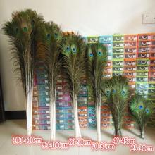 Natural peacock feathers eyes 9.8-51 inches/25-130 cm party decoration plumage feather festive event supplies(China)