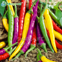 Vegetables pepper seeds Organic Cayenne Pepper Blend Seeds, Multicolored Pepper Seeds, NON GMO - 100pcs / lot