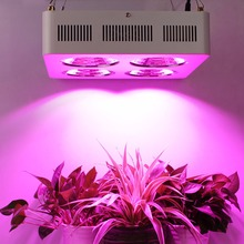 Favorable 800w Led Grow Light Kits Factory Direct Supply with 100% High Quality for Greehouse Hydroponics plant DE/US Stock