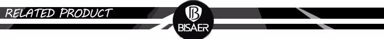 BISAER 1