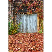 Autumn fallen leaves vinyl photography backdrops wooden door photo background for photo studio background fotografia F-1561