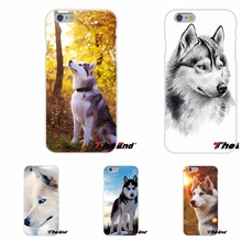 For Huawei G7 G8 P8 P9 Lite Honor 5X 5C 6X Mate 7 8 9 Y3 Y5 Y6 II Lovely Cute Dog siberian husky Soft Silicone Case