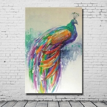 Pretty Male Peacock Have Nice Feather Oil Paintings Handpainted Picture With Framework Handmade Oil Painting(China)