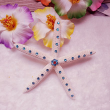 HappyKiss Hot new finger natural starfish Set drill seastar blue home decoration Decorated Wedding(China)