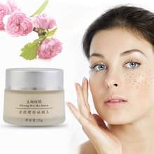 Anti Melasma Dark Age Spots Freckle Skin Whitening Cream Lightening skin care face care adopted plants abstraction High quality