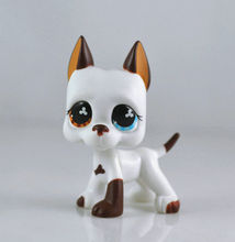 Littlest Pet DANE Blue Eye Brown Dog Child Girl Figure Toy Loose Cute LP993(China)