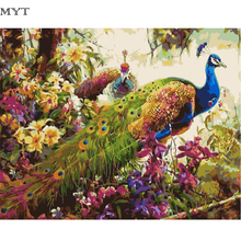 Handpainted Digital Peacock Diy Oil Painting By Numbers Canvas Painting Wall Art Home Decor Diy Painting Cheap Wall Pictures(China)
