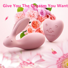 USB Charge Rabbit clitoris Stimulator Wireless Control Invisible Strap On Vibrator Love Egg Dual Strong Power Sex Toys For Woman(China)