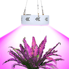LED Grow Light 150W Ture 50W UFO LED Plant Grow Light LED Emitting Diode Black/White Brightness with EU/US/UK Plug