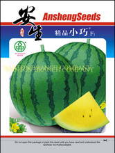2016 New Original package 100pcs ANSHENG Petite watermelon seeds, yellow flesh watermelon fruit seeds with high suger content