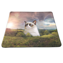 Direct Selling Funny Cat Painting Gaming Mousepad Rubber Anti-slip Optical Mouse Pad For PC Computer Desk Mice Play Mat