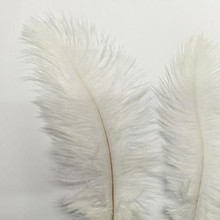 Free Shipping Hotsale 10PCS Beautiful Ostrich Feather 15-20 cm Wedding Decoration Party Plumage Decorative Celebration White