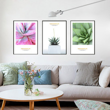 Pink Aloe Vera Cactus Posters And Prints Pot Plant Poster Wall Art Canvas Painting Canvas Pictures For Living Room Unframed(China)