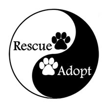 Car stying 15CM*15CM Automobile modeling interesting personality dog PAWS rescue of Yin and Yang of car stickers 11 Colour Jdm