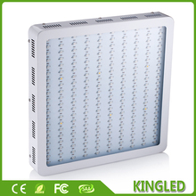 Best White KingLED 1200W LED Grow Light Full Spectrum Red/Bule/White/UV/IR High Yield Best For Indoor Plants Grow and Flower(China)