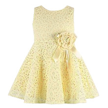 2017 New Summer Baby Girls Dress Elegant Princess Newborn Baby Dresses with Flower Sleeveless Fashion Lace Infant Girl Clothes
