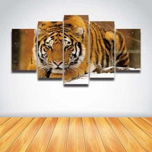 5 panel Printed tiger animal head modular picture landscape canvas painting for wall art living room home decor HD Prints poster