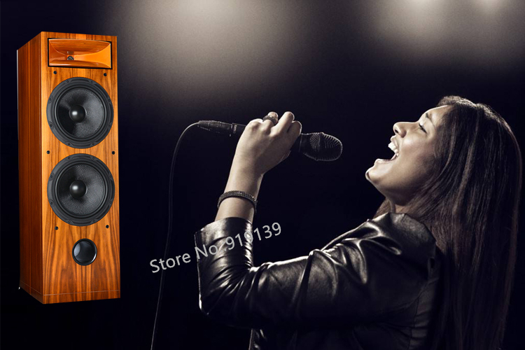 WF2-1000F Floor Stand Speaker pic 9