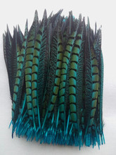 Wholesale Free shipping light blue 50 / lot 25-30cm Natural pheasant feather, DIY jewelry decoration(China)
