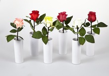 "Free Shipping 11"" Height Single Blossom Rose Flower Light with 2*AA Battery pot , One Blossom Rose Flowers with Green Leaf"