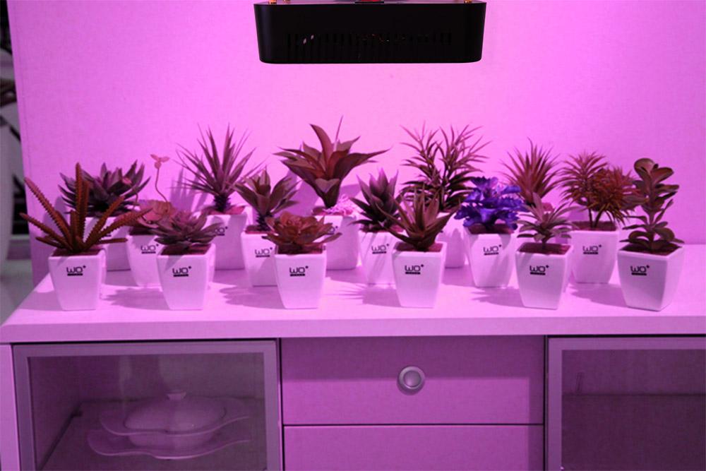 E27 PAR21W 36W 54W 300W led grow light Epistar Garden plant Indoor plants Flowers grow CE ROHS (5)